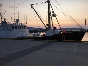 Kveldsstemning i Sandnesssjøen